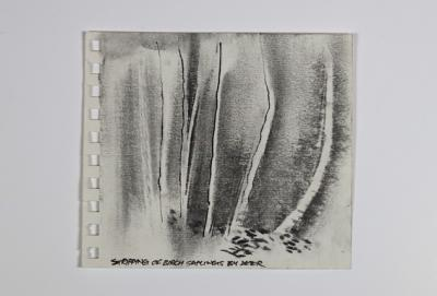 47. SKETCHBOOK-STRIPPED BY GRAZING