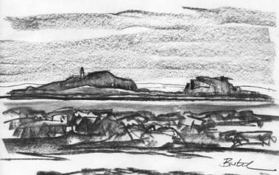 FIDRA FROM BROAD SANDS 2