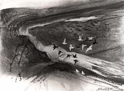 FLOODED FIELDS FIFE