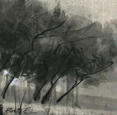TREE LIGHT (3 of 3)